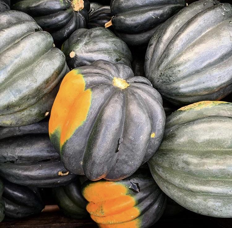 Nyack Farmers Market - Outdoors Year-round